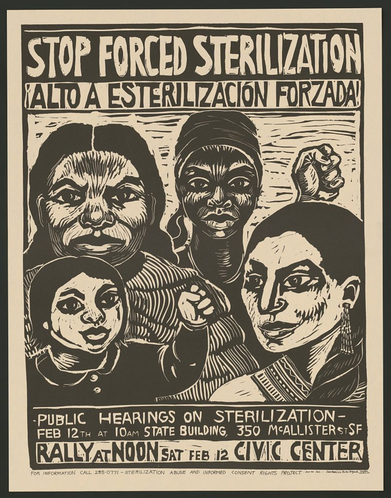 A poster calling for the end of forced sterilization of women.